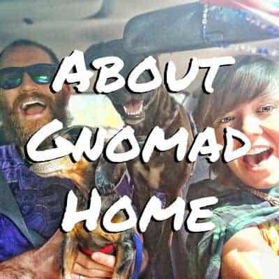 About Gnomad Home