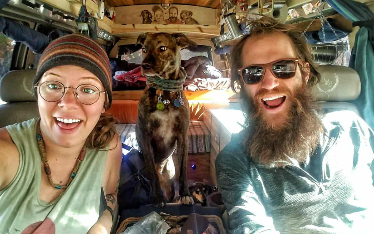 awesome vanlife dogs
