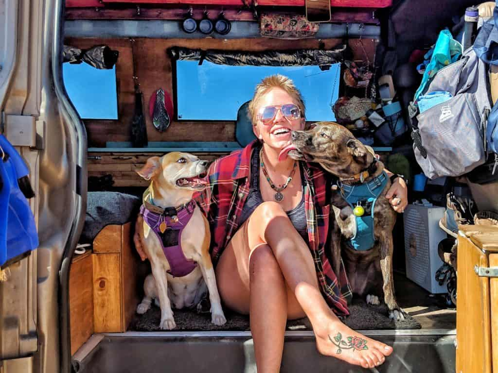 c05f3e8842 Our Top 10 Tips for Successfully Living in a Van with Your Dog