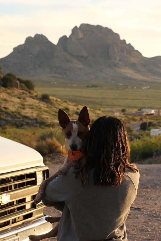Dog is being held by a woman, the dog faces the camera while the woman faces away looking at a mountain in the distance.