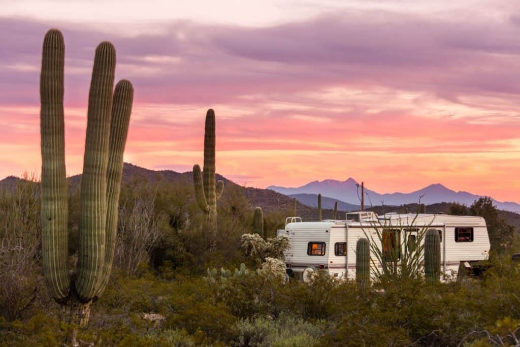 fifth wheel rv parked in the Arizona desert amongst giant saguaro cacti
