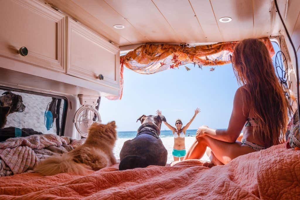 Abi & the dogs sit in the van, looking out at the beach and ocean and Nat as she stands on the beach with her hands up in excitement.