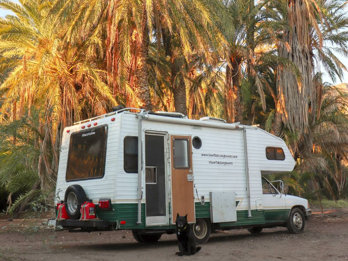 Toyota RV parked in the palm trees